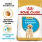 Labrador Retriever Junior karma sucha dla szczeniąt do 15 miesiąca, rasy labrador retriever 12 kg
