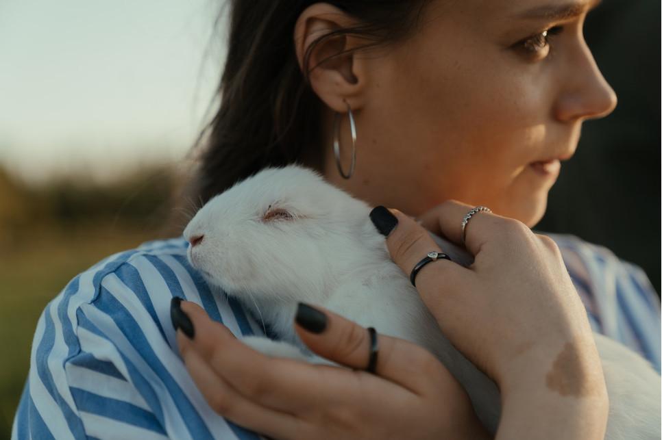 Po czym poznać, że nasz królik jest szczęśliwy i darzy nas sympatią? Jak sprawić by nas polubił?