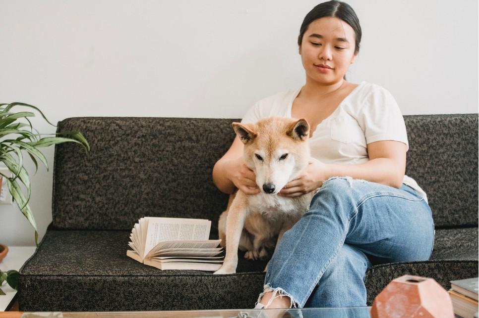 Które rasy psów uznawane są za najmądrzejsze i co ma wpływ na ich inteligencję? Według ekspertów psy należące do tych ras są najinteligentniejsze.