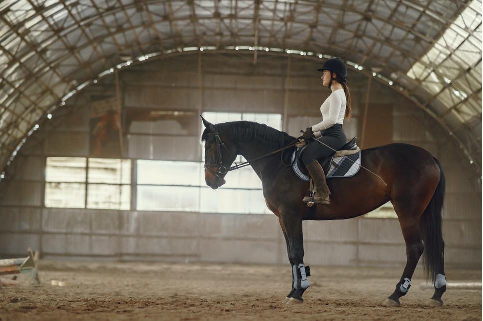 Pierwsze zajęcia jazdy konnej to duże wydarzenie i należy się do niego odpowiednio przygotować.