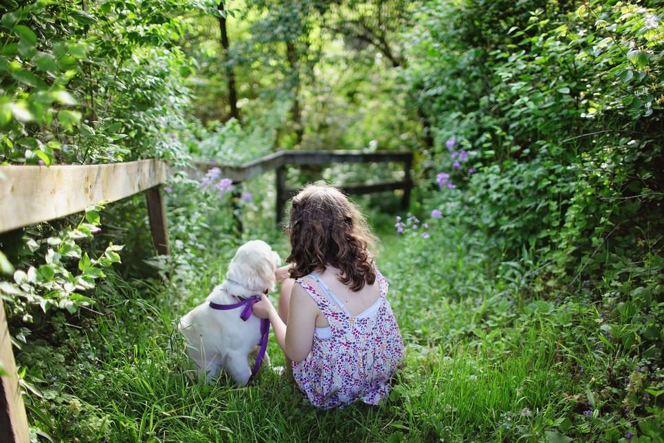 Psy dla dzieci powinny charakteryzować się opiekuńczością, łagodnym usposobieniem, cierpliwością.