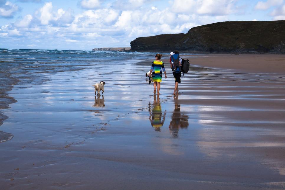Wyjazd z psem nad morze wymaga starannego przygotowania z uwagi na bezpieczeństwo pupila i komfort innych wczasowiczów.