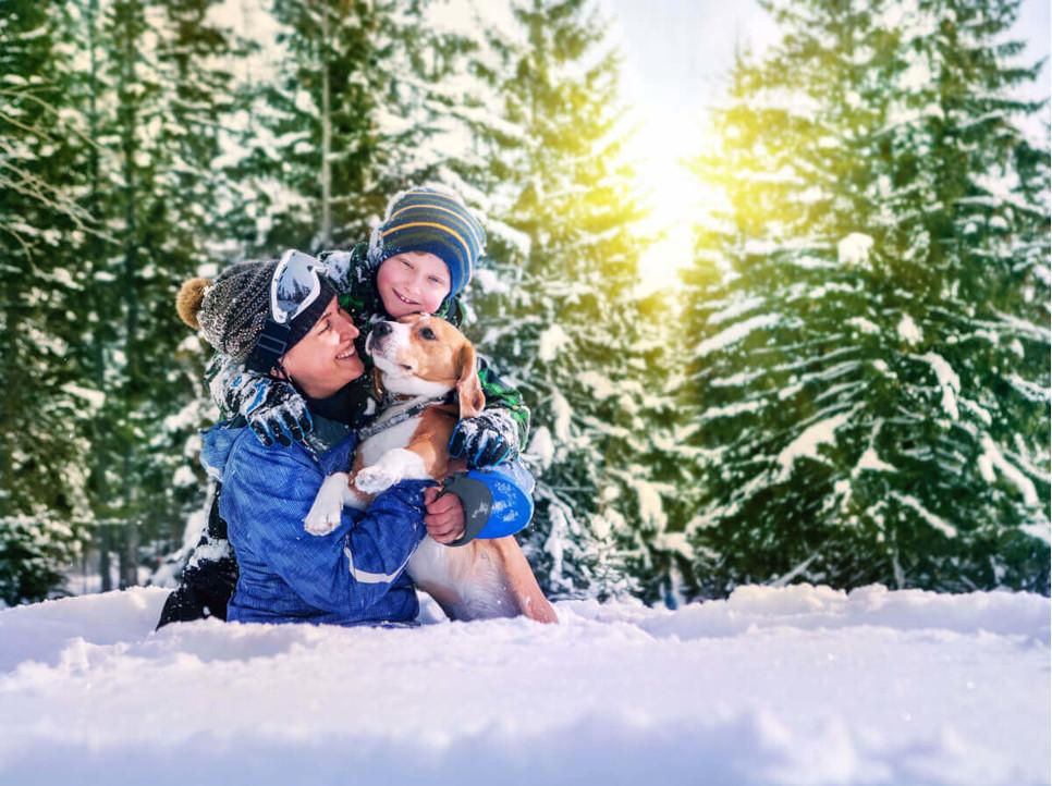 Jak dbać o psa zimą?