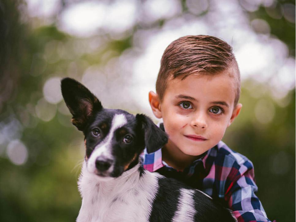 Wybór nowego psa, jako nowego członka rodziny